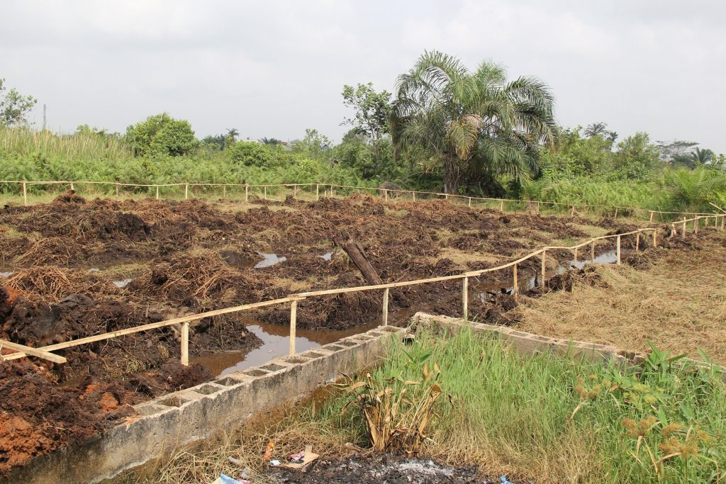 Foundation of the on-going project